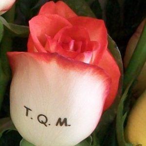Agregar mensaje a 1 rosa
